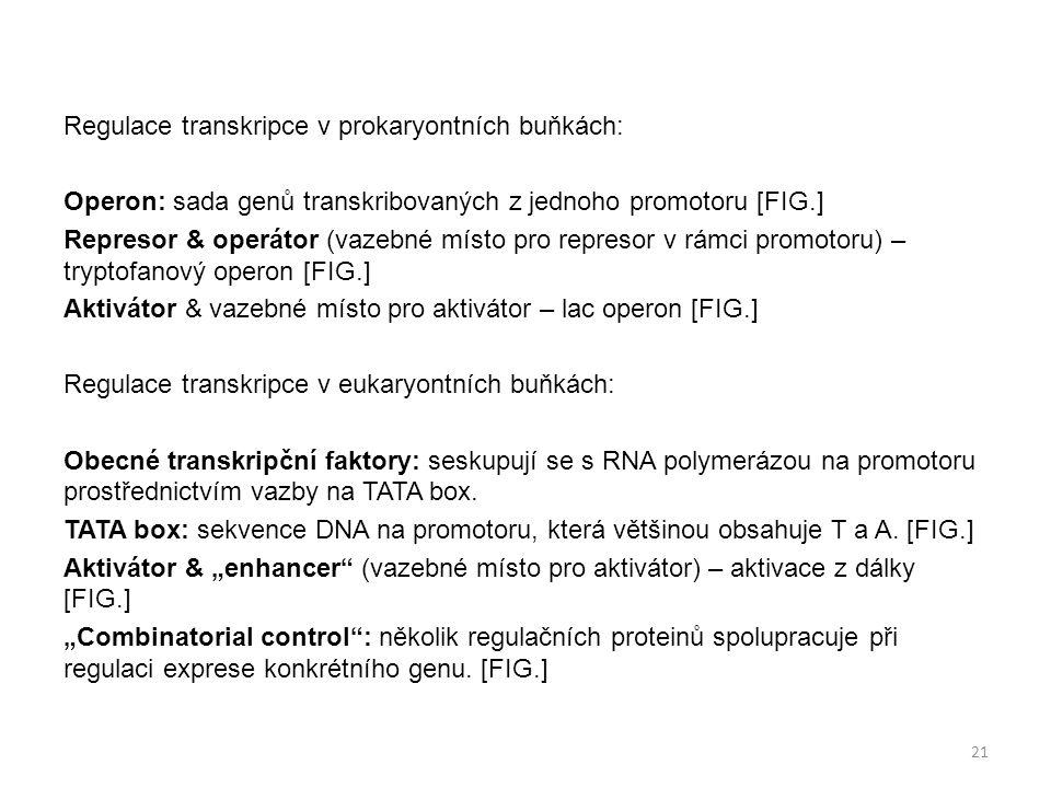 Regulace transkripce v prokaryontních buňkách: Operon: sada genů transkribovaných z jednoho promotoru [FIG.] Represor & operátor (vazebné místo pro represor v rámci promotoru) – tryptofanový operon [FIG.] Aktivátor & vazebné místo pro aktivátor – lac operon [FIG.] Regulace transkripce v eukaryontních buňkách: Obecné transkripční faktory: seskupují se s RNA polymerázou na promotoru prostřednictvím vazby na TATA box.
